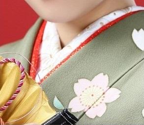 蝶刺しゅう半衿_名古屋市